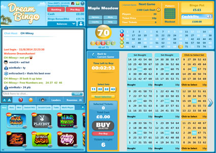 Dream Bingo 75 Ball Game