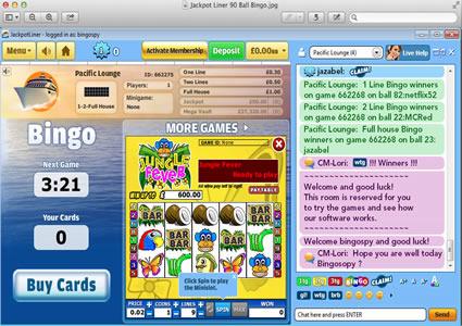 Jackpot Liner 90 Ball Game
