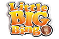 Visit Little Big Bingo