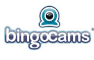 Enjoy A Red Hot Summer At Bingocams