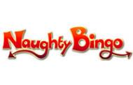 New Site Naughty Bingo Launches