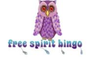 WSN Welcomes 6th Brand, Free Spirit Bingo